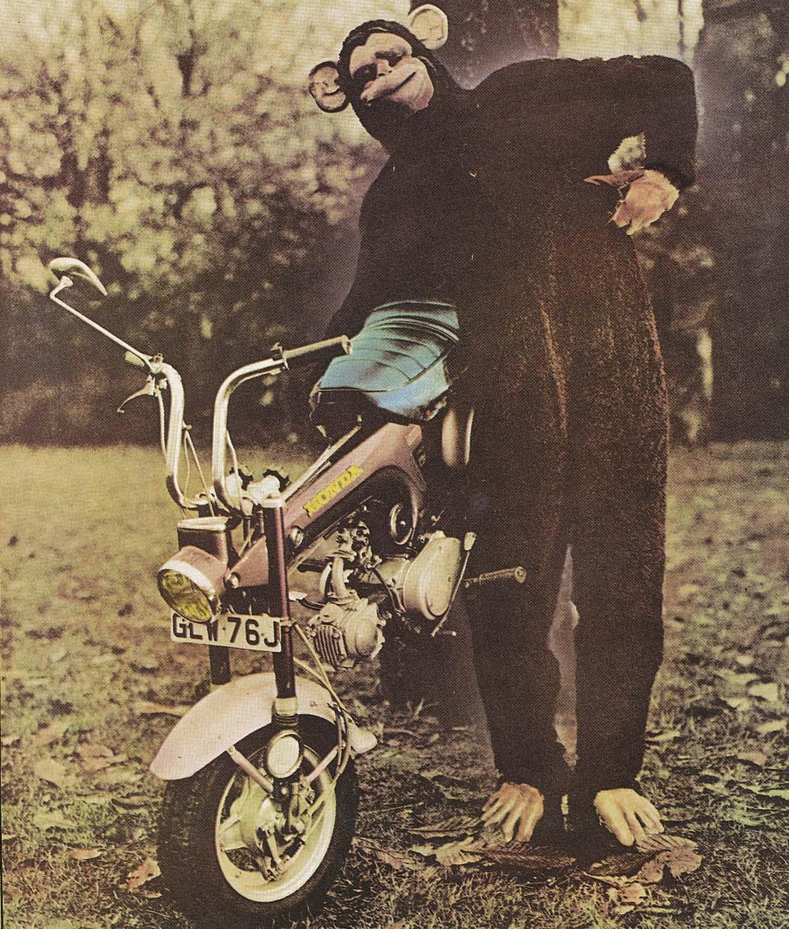 Monkeybike-1 (1 of 1)