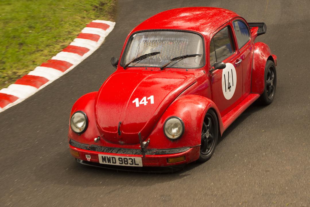 Hillclimb Beetle