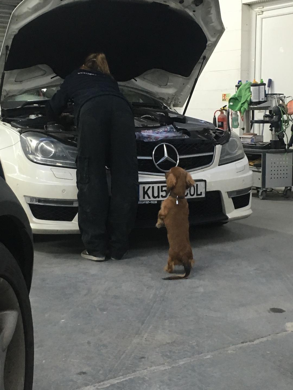Mercedes at Kustom Kolors